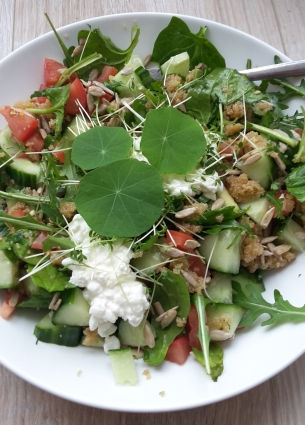 Amaranth salade